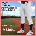 野球 ウェア ユニフォームパンツ 一般用 ミズノ MIZUNO 練習 レギュラーパンツ ヒザ2重 ホワイト mz-uni
