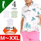 ゴルフウェア メンズ ポロシャツ 半袖 ゴルフ ゴルフポロシャツ 大きいサイズ 鹿の子 ゴルフポロシャツ ゴルフ ウエア 春 夏 おしゃれ  CG-SP603N