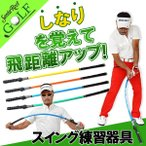スイングトレーナー ゴルフ スイング 練習器具 トレーニング器具 チェックスティック 同梱不可  IF-GF0002 予約販売