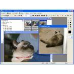 動画 gif画像 変換の画像