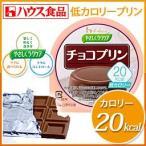 ダイエット/低カロリー/おやつ/デザート/スイーツ/糖尿病/食品/やさしくラクケア 20kcal チョコプリン (6個入り)