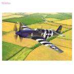 アカデミー 1/48 USAAF P-51B ノルマンディー上陸作戦70周年セット プラモデル AM12303(E3399)
