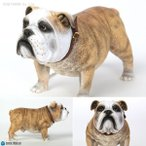 DiD 1/6 Animal series British Bulldog (アニマルシリーズ ブリティッシュ ブルドッグ) AS002A(ZF06524)