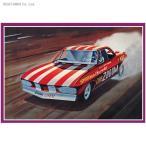 1/25 1969 シェビー チェズーム コルベア ファニーカー プラモデル AMT 873(ZS15155)