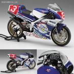 1/12 Honda NSR500 1989 全日本GP500 (カルトグラフデカール付属) プラモデル ハセガワ 21717 ※新金型追加(ZS17561)