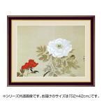 アート額絵 小林古径 「牡丹」 G4-BN100 52×42cm