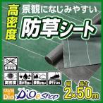 ダイオ化成 高密度防草シート 緑 2mx50m
