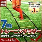 トレーニング ラダー トレーニングラダー 7m プレート13枚 トレーニング用品 練習器具 収納袋付き フィットネス ダイエット スポーツ 練習 サッカー フットサル