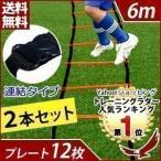 トレーニングラダー 6m 連結タイプ  トレーニング用品 サッカー フットサル ステップ練習 瞬発力 練習器具 陸上 俊敏性 スポーツ 収納袋付き 部活 2本セット