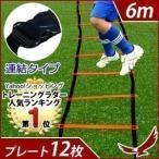 トレーニングラダー 6m 連結タイプ  トレーニング用品 サッカー フットサル ステップ練習 瞬発力 練習器具 陸上 俊敏性 スポーツ 収納袋付き 部活 オレンジ