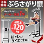ぶら下がり健康器 懸垂 筋トレ Wing up クッション付 ぶら下がり健康器具 TK-002KG エクササイズ ダイエット シェイプアップ トレーニング