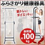 ぶら下がり健康器 懸垂 筋トレ Wing up ぶら下がり健康器具 TK-001KG エクササイズ ダイエット シェイプアップ 全身運動 トレーニング