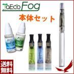 TaEcoFog 電子タバコ 本体セット FG-401 リキッド フレーバー 持ち歩き 電子煙草 禁煙 ナチュラル ミント アロマ 気分転換 メンズ レディース TaEco専用 タエコ