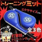 ボクシングミット パンチングミット キックミット ハンドミット 2個 セット 軽量 キックボクシング 空手 テコンドー ムエタイ 格闘技 エクササイズ