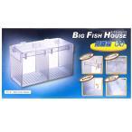 アズー 隔離箱(大) ビッグフィッシュハウス BIGFISHHOUSE