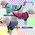 犬服 adidog マルチカラーストライプTシャツ(中型犬用)ドッグウェア 犬の服2点購入でメール便送料無料