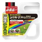 レインボー薬品 シバキープProサッチ分解剤 1.5kg