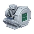 昭和 電動送風機渦流式高圧シリーズガストブロアU2Vシリーズ0.2kW U2V-20S パンコンテナ オフィス住設用品 環境改善機器 送風機