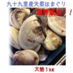 天然ハマグリ 1kg 大サイズ(約140g/個)千葉県九十九里産漁師直送 地ハマ 大蛤 (バーベキュー BBQ)