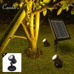 ソーラーライト 屋外 高品質タイプ 防水 LEDスポットライト ガーデンライト スポットライト 温暖色2灯 LEDイルミネーション