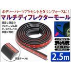 マルチディフレクターモール 2.5m ブラック テールリップ、リアウイング、スポイラーなどエアロパーツのアクセントとして!レビュー送料無料