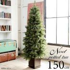 クリスマスツリー 150cm 樅 木製クリスマスツリー 北欧 ポットツリー(オーナメントなし)