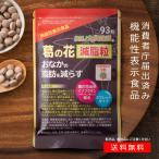 葛の花減脂粒 31日分 機能性表示食品 DMJえがお生活