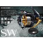 shimano  ツインパワーSW 8000HG