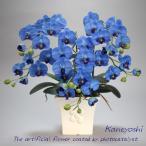 送料無料 お祝い お供えの花 仏花 フラワーギフト 光触媒胡蝶蘭小輪 3本立 ブルー