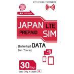 Docomo 日本で使えるプリペイドデータSIMカード 30日間使い切りタイプ MicroSIM 送料無料