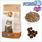 フォルツァディエチ 愛猫の健康を守る新しいかたち