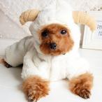羊 ひつじ コスプレ 冬 ニット ハロウィン 仮装 フリース 猫 チワワ ダックス トイプードル メール便のみ 送料無料