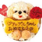 犬のケーキ(鶏のミートローフ 愛犬の顔 ケーキ)犬の誕生日やクリスマスにどうぞ