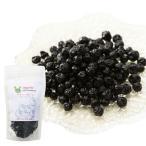 犬・白内障・目に無添加 ブルーベリー(ワイルド ブルーベリー 100g)抗酸化作用が豊富な美味しい 目薬(天然の サプリメント)