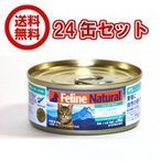 【FelineNatural(フィーラインナチュラル)】プレミアム缶キャットフード ビーフ&ホキ85g×24缶セット(100%ナチュラル猫用総合栄養食)K9ナチュラル正規品