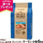 セレクトバランス グレインフリー アダルト サーモン 小粒 6kg ドッグフード 犬 無添加 穀物不使用 オメガ6脂肪酸 オメガ3脂肪酸 グルコサミン コンドロイチン