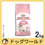 SALE ロイヤルカナン 子猫用 キトン 2kg [2423]