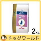 ロイヤルカナン ベッツプラン 猫用 準療法食 pHケア フィッシュ 2kg
