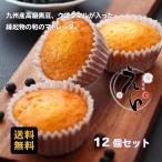 出産内祝い お返し お菓子 ギフト 送料無料 和のマドレーヌ 九州想菓えん12個(常温便)