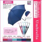 (60本ごとに送料700円) 58cm 58センチ 婦人傘 レディース おしゃれ傘 丈夫なグラスファイバー製 ジャンプ傘 プレゼントにおすすめ 60093