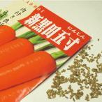 野菜の種/種子 新黒田五寸人参 1袋 5mL