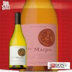 (白ワイン) ビニャ マイポ レセルバ ビトラル シャルドネ  チリ 白ワイン 750ml