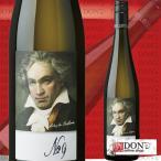 グリューナー・ヴェルトリーナー ベートーヴェン 第九 ラベル 2015年 750ml オーストリア 白ワイン ヴァイングート・マイヤー・アム・プァールプラッツ
