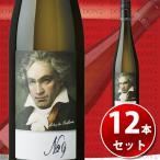 (12本セット・送料無料)グリューナー・ヴェルトリーナー ベートーヴェン 第九 ラベル 2015年 750ml オーストリア 白ワイン