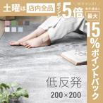 ラグ 洗える ラグマット シャギーラグ リビングラグ カーペット 低反発 約200×200サイズ 三畳 3畳 洗える 防音カーペット