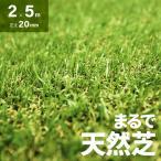 人工芝 ロール 送料無料 2m×5m 芝丈20mm 人工芝 芝生マット 人工芝生 人工芝マット 人工芝ロール 芝生