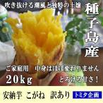 さつまいも 安納芋 こがね 20kg  訳あり 種子島産  黄金芋 2S〜2L混合