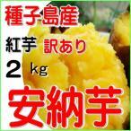 種子島産安納芋・紅5kg/訳あり品・2S〜2L混合/焼き芋に最適/南種子町日高農園産さつまいも