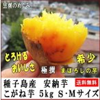 サツマイモ 安納芋 こがね 5kg Sサイズ 種子島産黄金芋 38〜71個