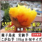 サツマイモ 安納芋こがね 10kg S・M混合 種子島産 特選 中 甘くて香ばしい黄金芋